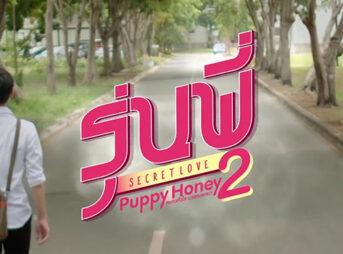 Puppy-Honey2